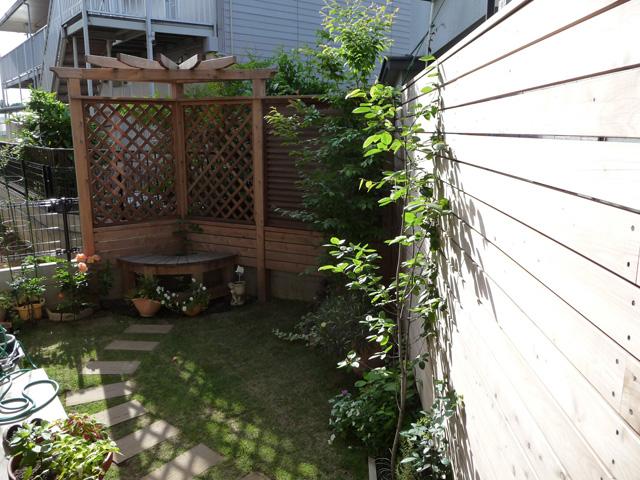 フェンスに誘引したつる性植物どんどん伸びます