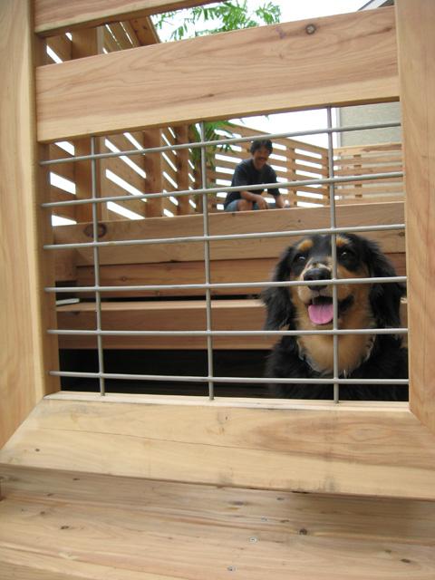 扉の一部に格子窓があり、外の景色が楽しめるワン!