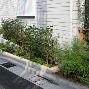 手前と奥で花壇の高さを変えてみました。生垣は、ギンモクセイ。