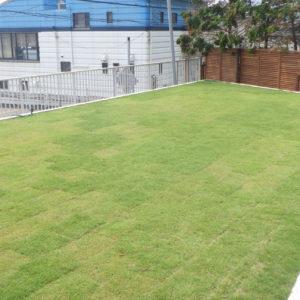 目隠しフェンスと芝が美しい庭