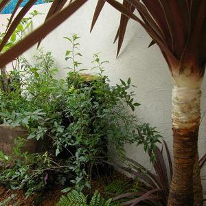 彩り鮮やかな植栽で美しいエントランス